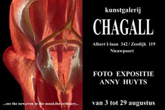 2010 expo GALERIE CHAGALL NIEUWPOORT