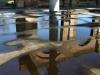 reflectie31